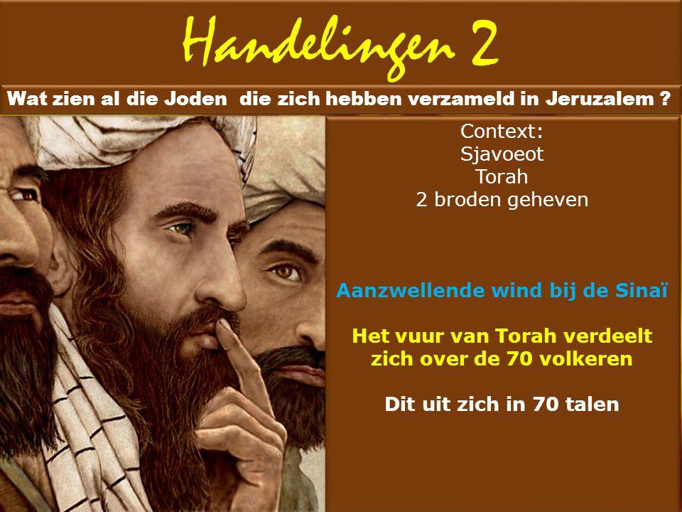 Handelingen 2 Wat zien al die Joden die zich hebben verzameld in Jeruzalem ? Tekst een geweldige windvlaag Echos hosper pheromenes pnoes biaias Geluid