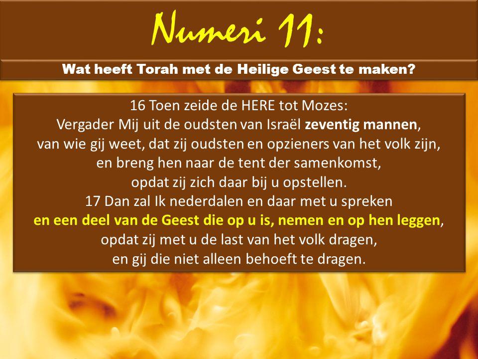 Numeri 11: Wat heeft Torah met de Heilige Geest te maken? 16 Toen zeide de HERE tot Mozes: Vergader Mij uit de oudsten van Israël zeventig mannen, van