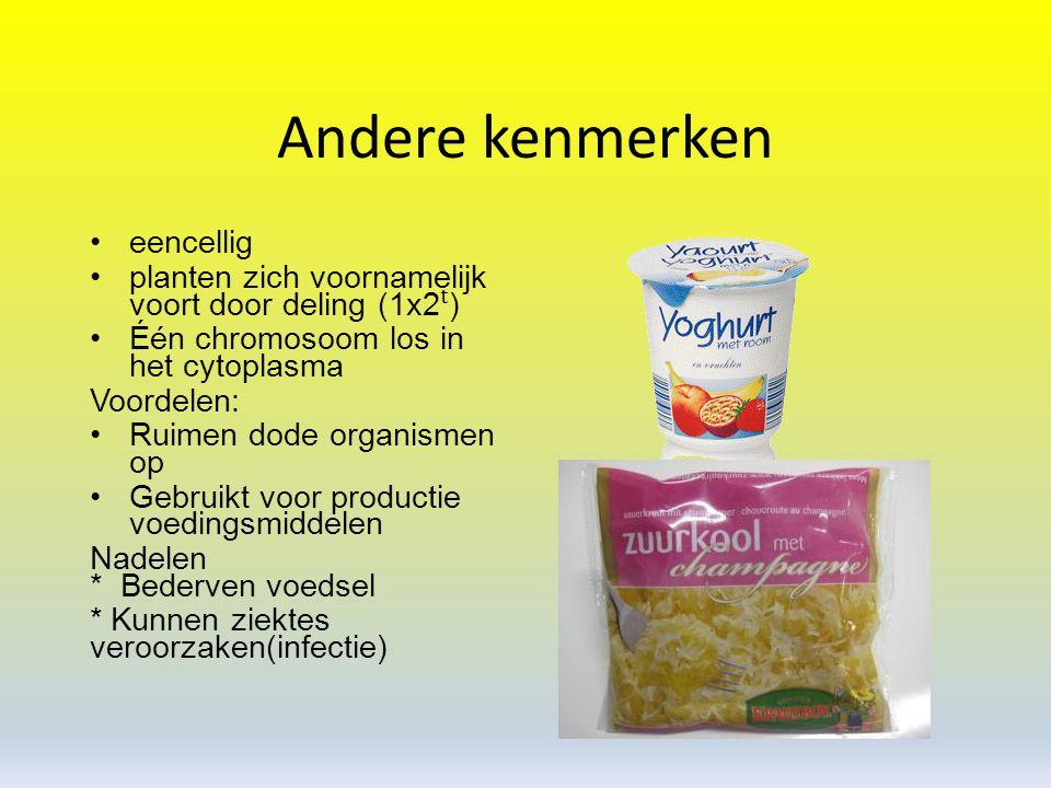 Bedektzadigen Kenmerken bedektzadigen: zaden in vruchten bladeren niet naaldvormig Voorbeelden: - bananenboom - gras