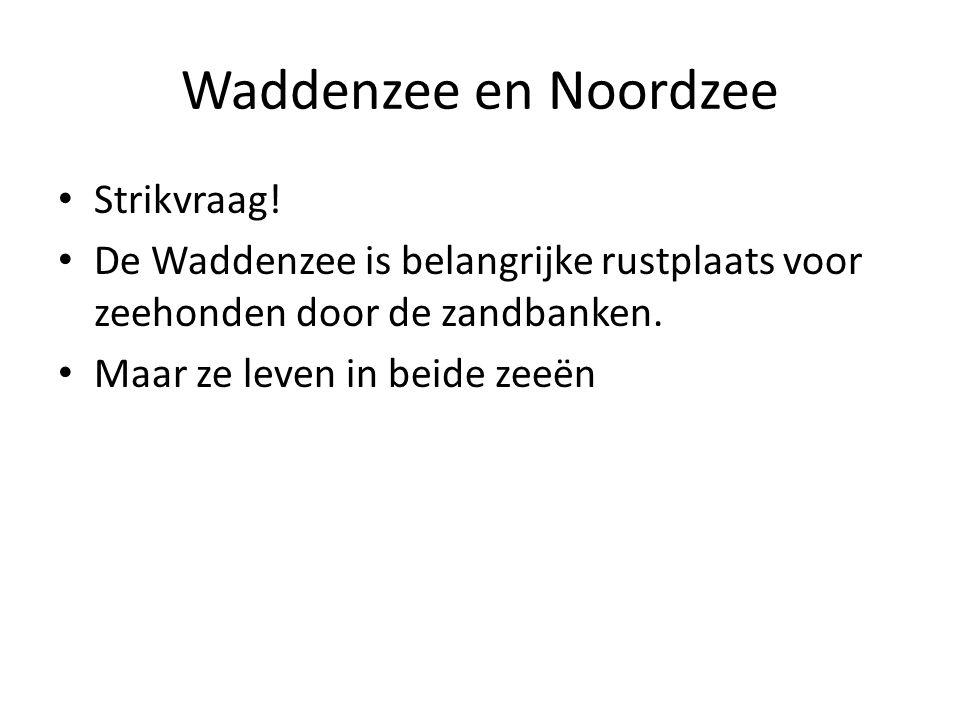 Waddenzee en Noordzee Strikvraag.