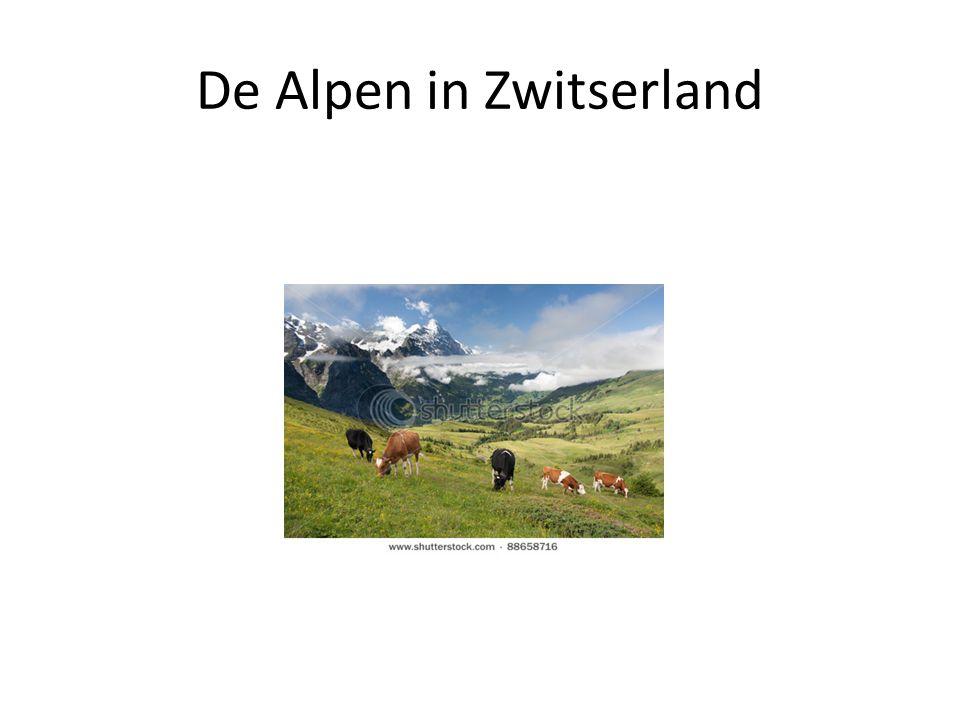 De Alpen in Zwitserland