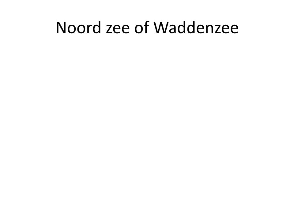 Noord zee of Waddenzee