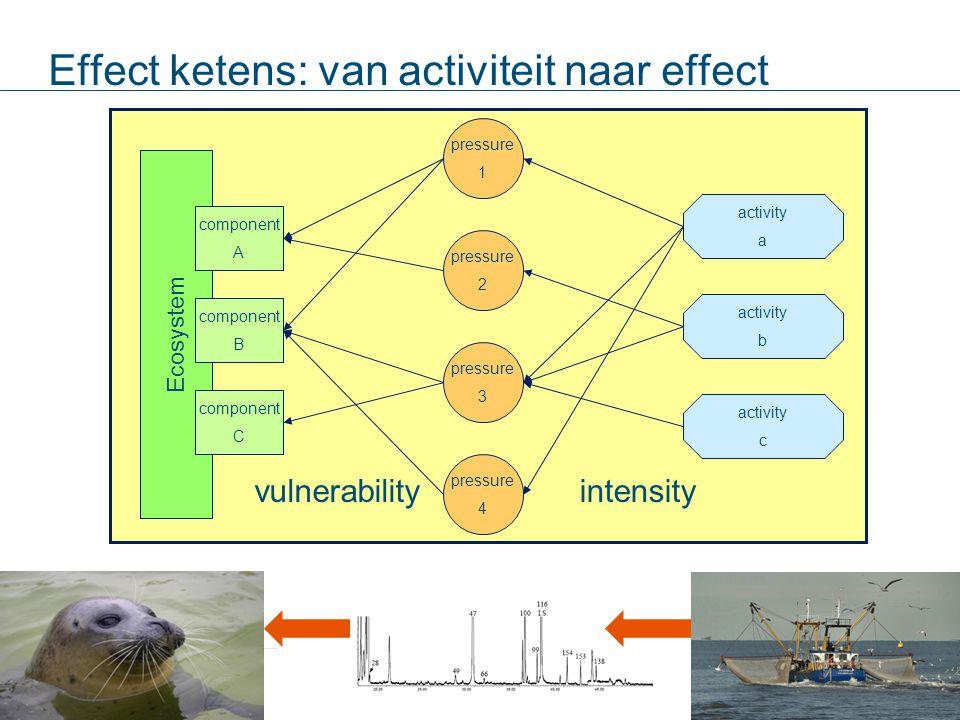 Effect ketens: van activiteit naar effect Ecosystem component B pressure 1 pressure 2 pressure 3 pressure 4 activity a activity b activity c component A component C vulnerabilityintensity