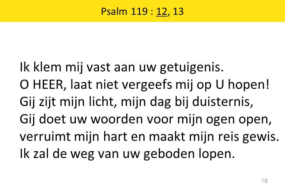 Psalm 119 : 12, 13 19 Ik klem mij vast aan uw getuigenis. O HEER, laat niet vergeefs mij op U hopen! Gij zijt mijn licht, mijn dag bij duisternis, Gij