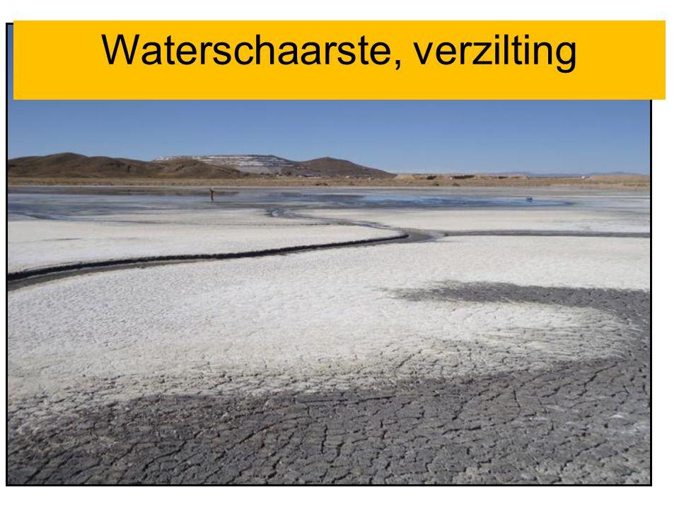Waterschaarste, verzilting