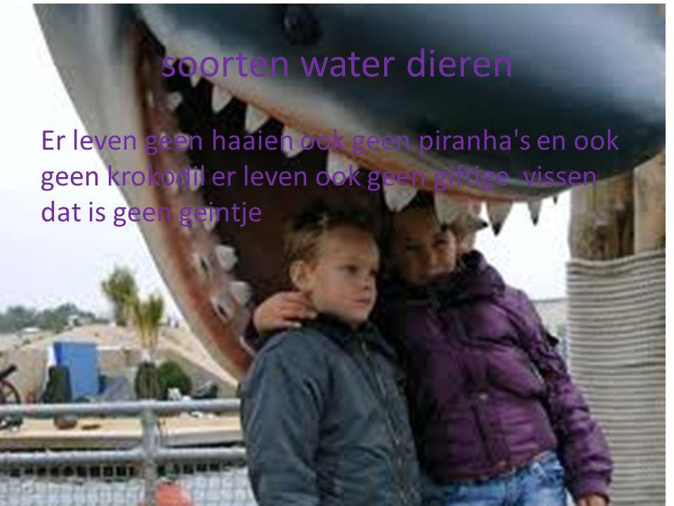 soorten water dieren Er leven geen haaien ook geen piranha's en ook geen krokodil er leven ook geen giftige vissen dat is geen geintje