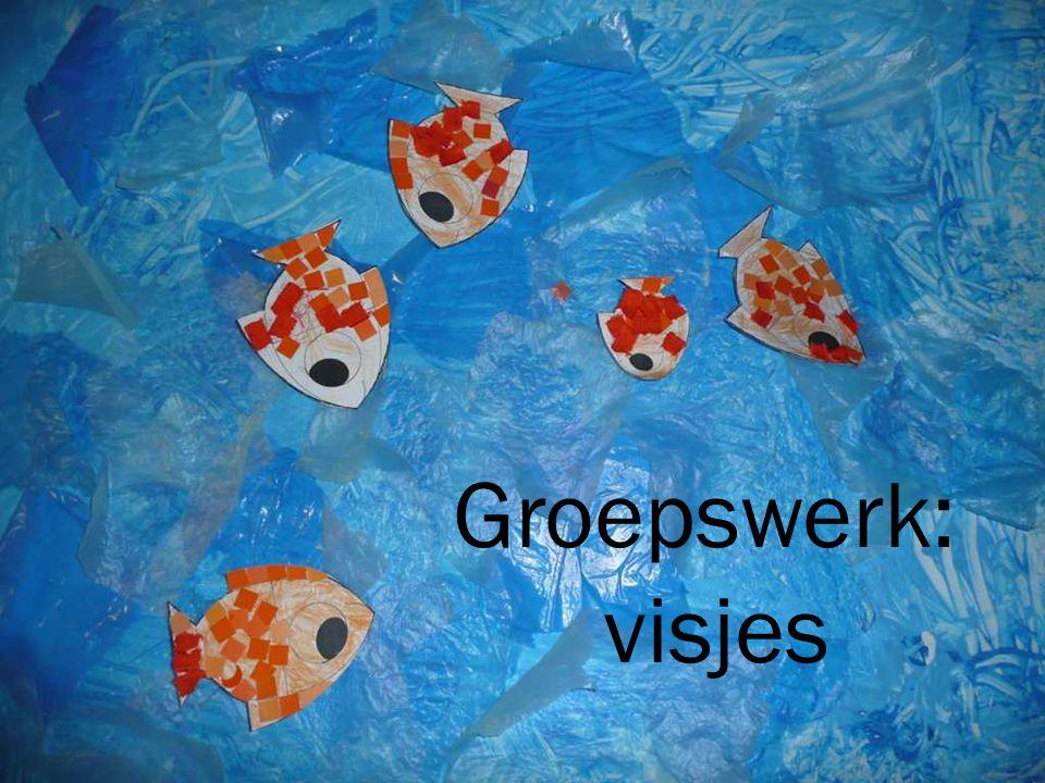 Groepswerk: visjes