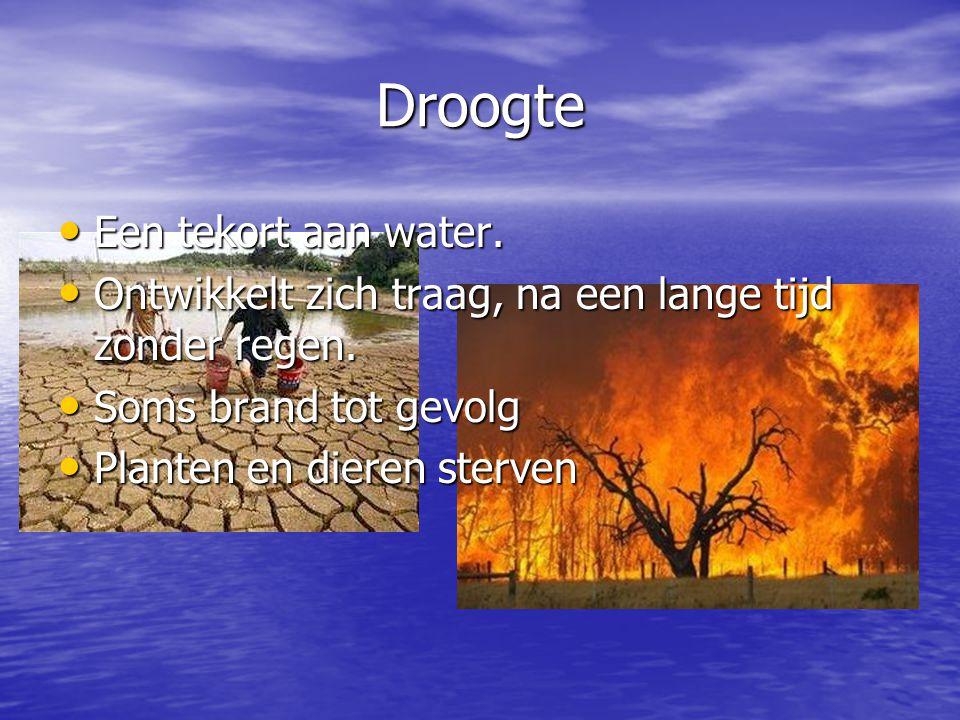 Droogte Een tekort aan water. Een tekort aan water. Ontwikkelt zich traag, na een lange tijd zonder regen. Ontwikkelt zich traag, na een lange tijd zo