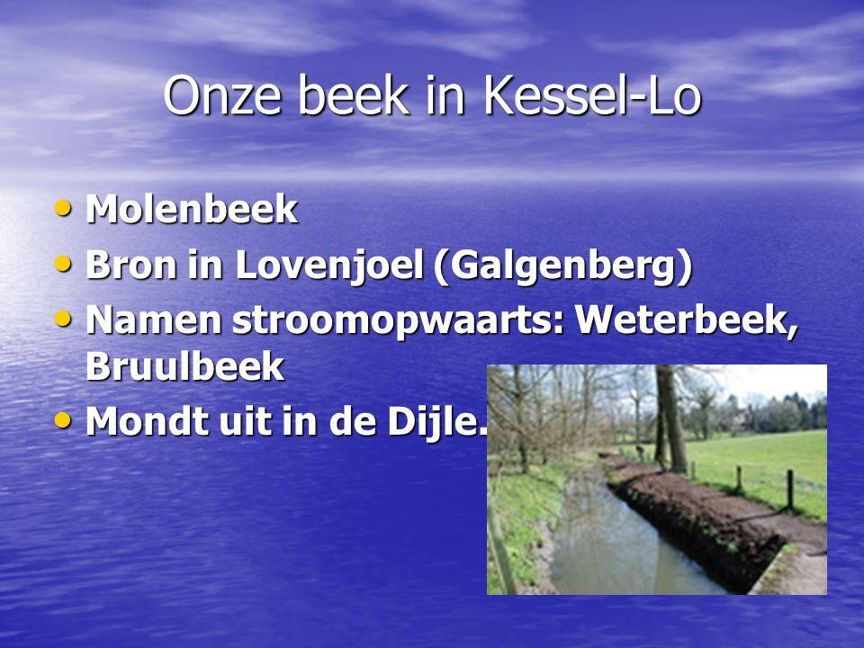 Onze beek in Kessel-Lo Molenbeek Molenbeek Bron in Lovenjoel (Galgenberg) Bron in Lovenjoel (Galgenberg) Namen stroomopwaarts: Weterbeek, Bruulbeek Namen stroomopwaarts: Weterbeek, Bruulbeek Mondt uit in de Dijle.