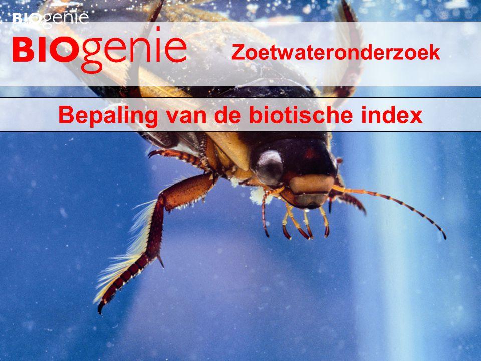 Bepaling van de biotische index Zoetwateronderzoek
