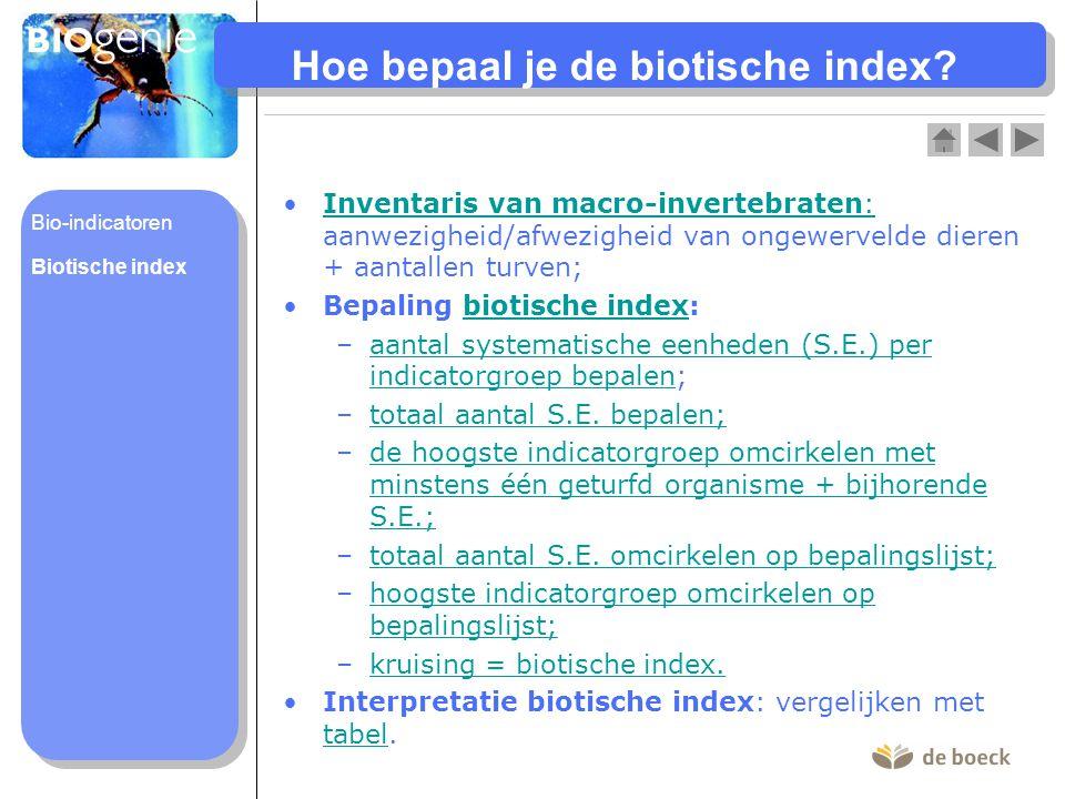 Hoe bepaal je de biotische index? Inventaris van macro-invertebraten: aanwezigheid/afwezigheid van ongewervelde dieren + aantallen turven;Inventaris v
