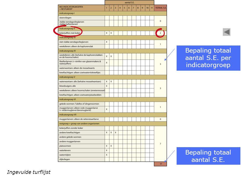 Ingevulde turflijst Bepaling totaal aantal S.E. per indicatorgroep Bepaling totaal aantal S.E.