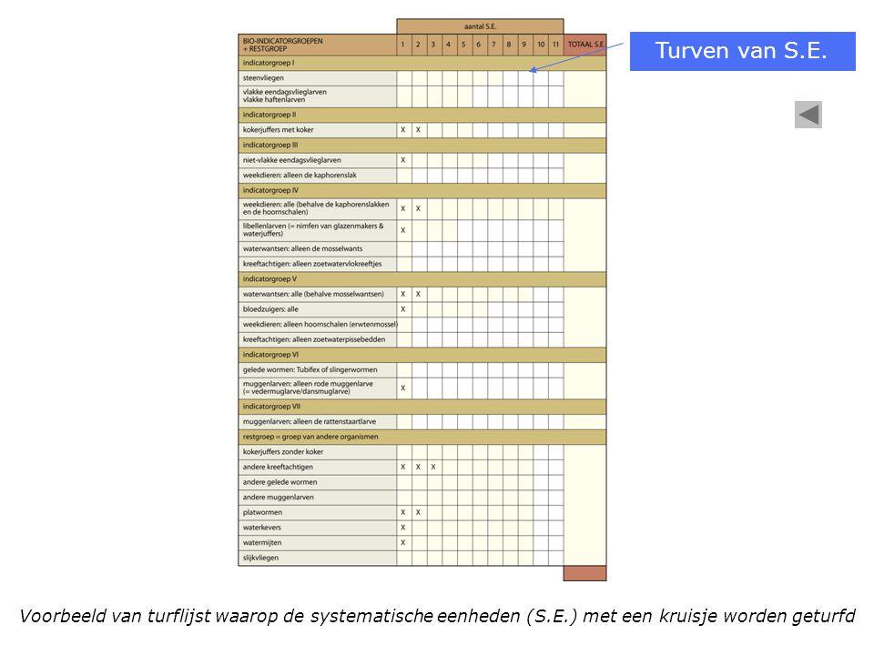 Voorbeeld van turflijst waarop de systematische eenheden (S.E.) met een kruisje worden geturfd Turven van S.E.
