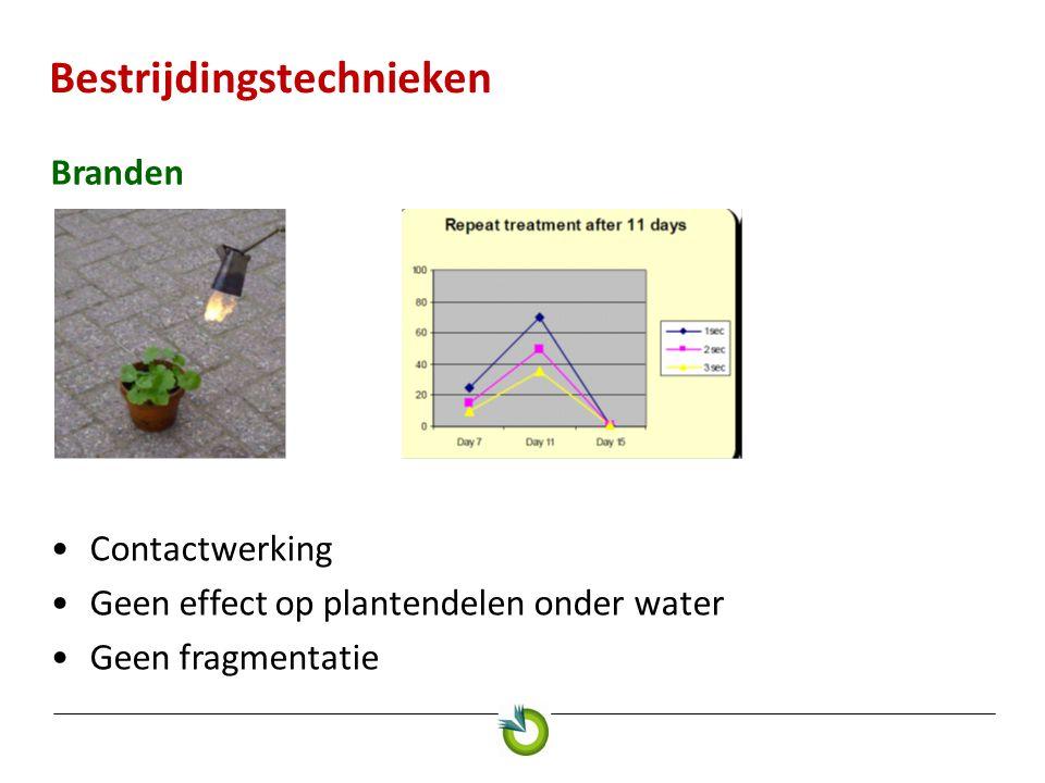 Bestrijdingstechnieken Branden Contactwerking Geen effect op plantendelen onder water Geen fragmentatie