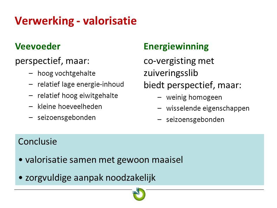 Verwerking - valorisatie Veevoeder perspectief, maar: –hoog vochtgehalte –relatief lage energie-inhoud –relatief hoog eiwitgehalte –kleine hoeveelhede