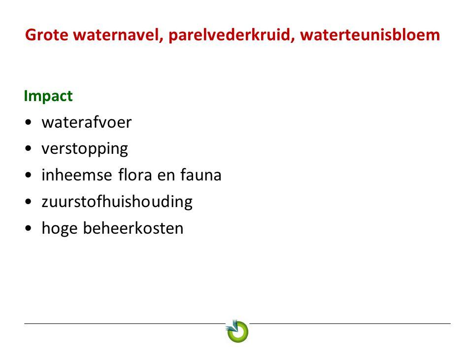 Impact waterafvoer verstopping inheemse flora en fauna zuurstofhuishouding hoge beheerkosten Grote waternavel, parelvederkruid, waterteunisbloem