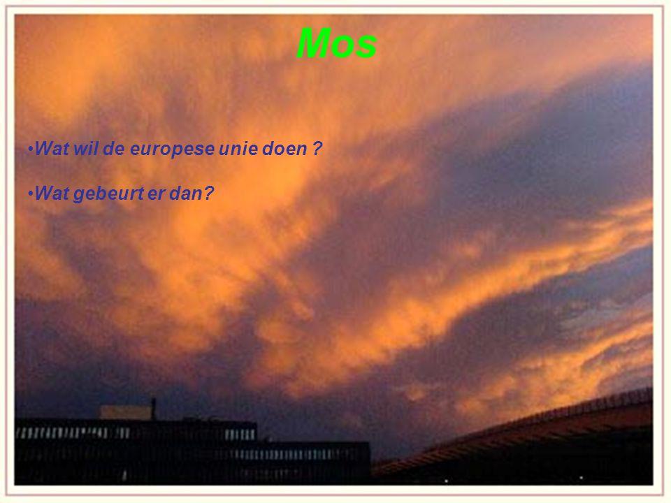 Waardoor wordt de aarde opgewarmd Wat heeft de opwarming van de aarder te maken met het broeikas effect.