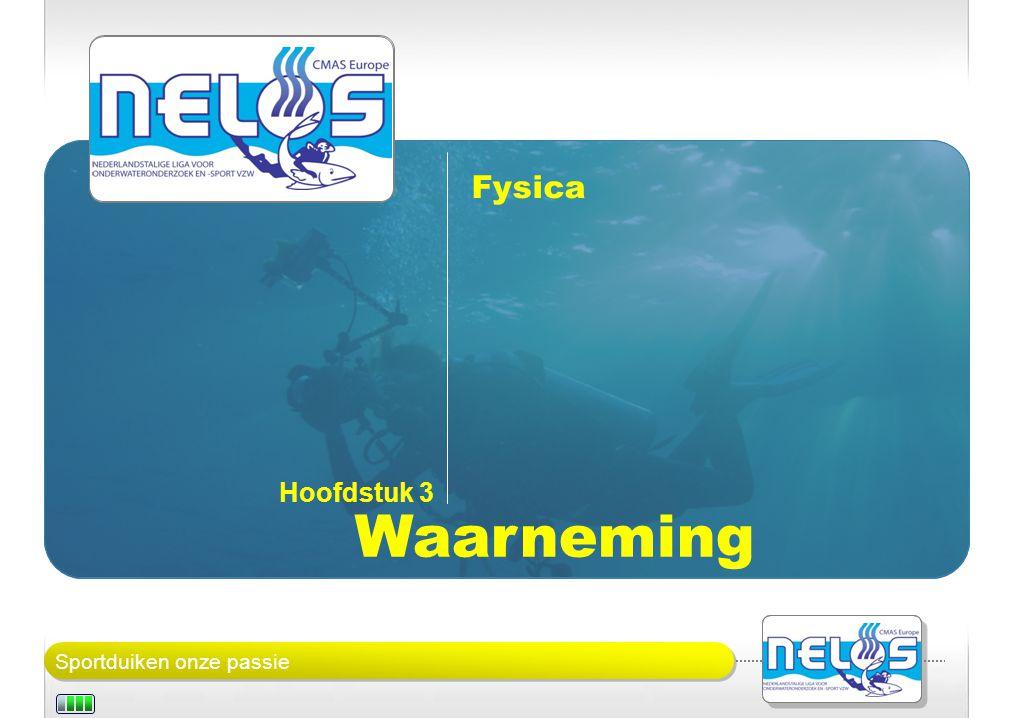 Sportduiken onze passie Fysica: waarneming Bij het duiken begeven we ons in een ander medium: water.
