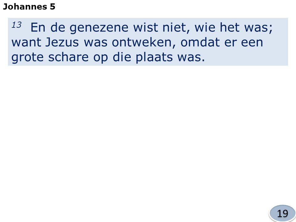13 En de genezene wist niet, wie het was; want Jezus was ontweken, omdat er een grote schare op die plaats was.