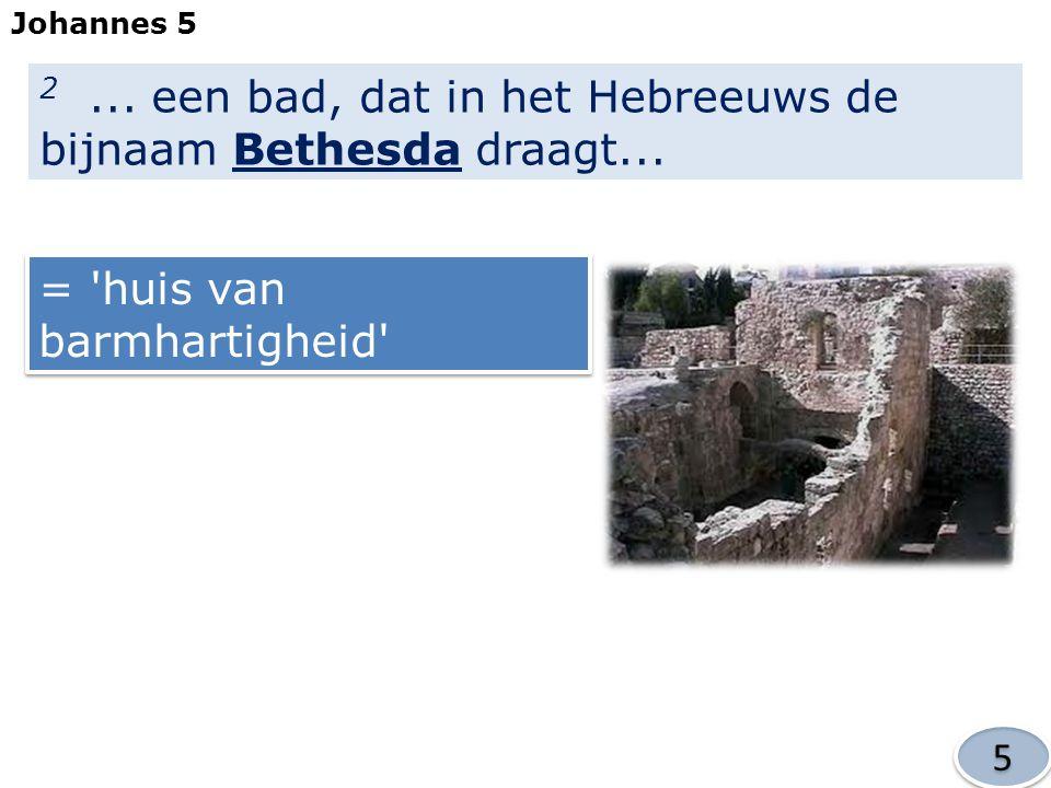 2...een bad, dat in het Hebreeuws de bijnaam Bethesda draagt...