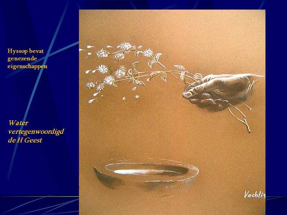 Hyssop bevat genezende eigenschappen Water vertegenwoordigd de H Geest