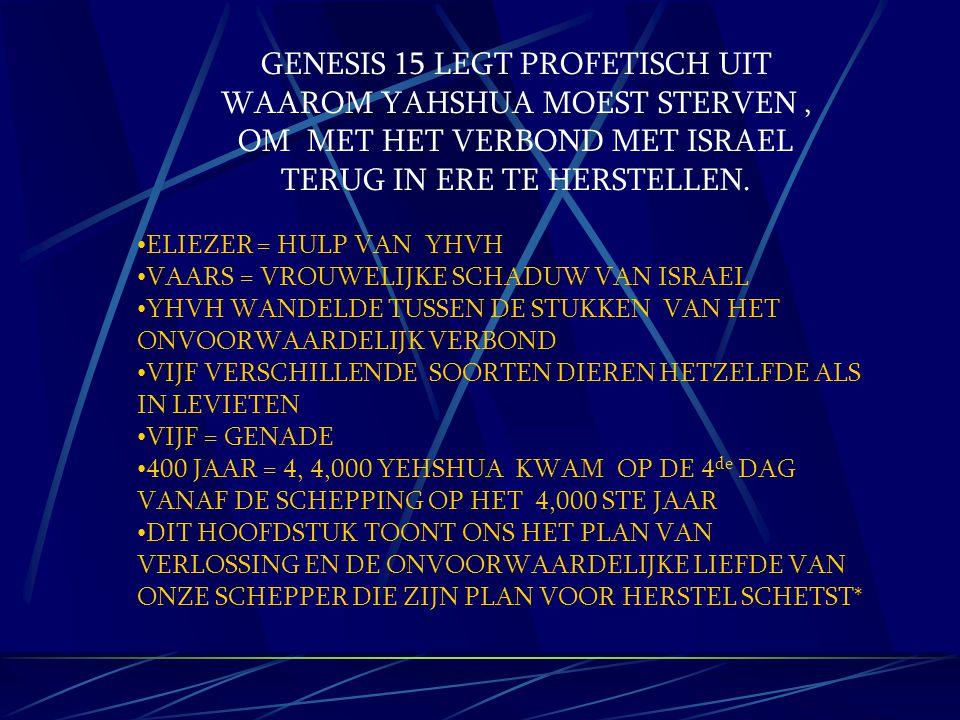 GENESIS 15 LEGT PROFETISCH UIT WAAROM YAHSHUA MOEST STERVEN, OM MET HET VERBOND MET ISRAEL TERUG IN ERE TE HERSTELLEN. ELIEZER = HULP VAN YHVH VAARS =