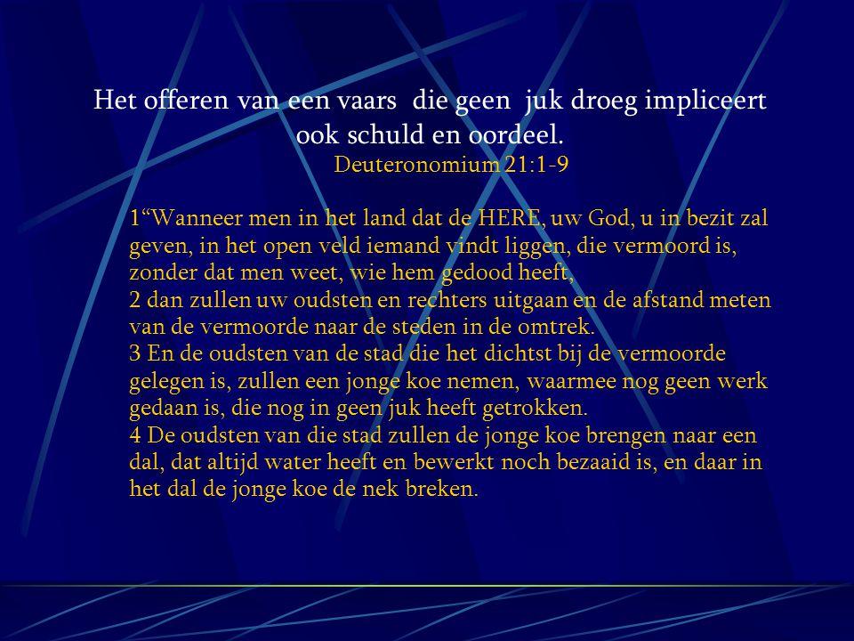 """Het offeren van een vaars die geen juk droeg impliceert ook schuld en oordeel. Deuteronomium 21:1-9 1""""Wanneer men in het land dat de HERE, uw God, u i"""