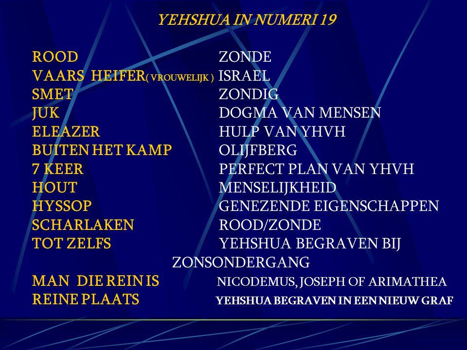 YEHSHUA IN NUMERI 19 ROOD ZONDE VAARS HEIFER ( VROUWELIJK ) ISRAEL SMET ZONDIG JUK DOGMA VAN MENSEN ELEAZER HULP VAN YHVH BUITEN HET KAMP OLIJFBERG 7