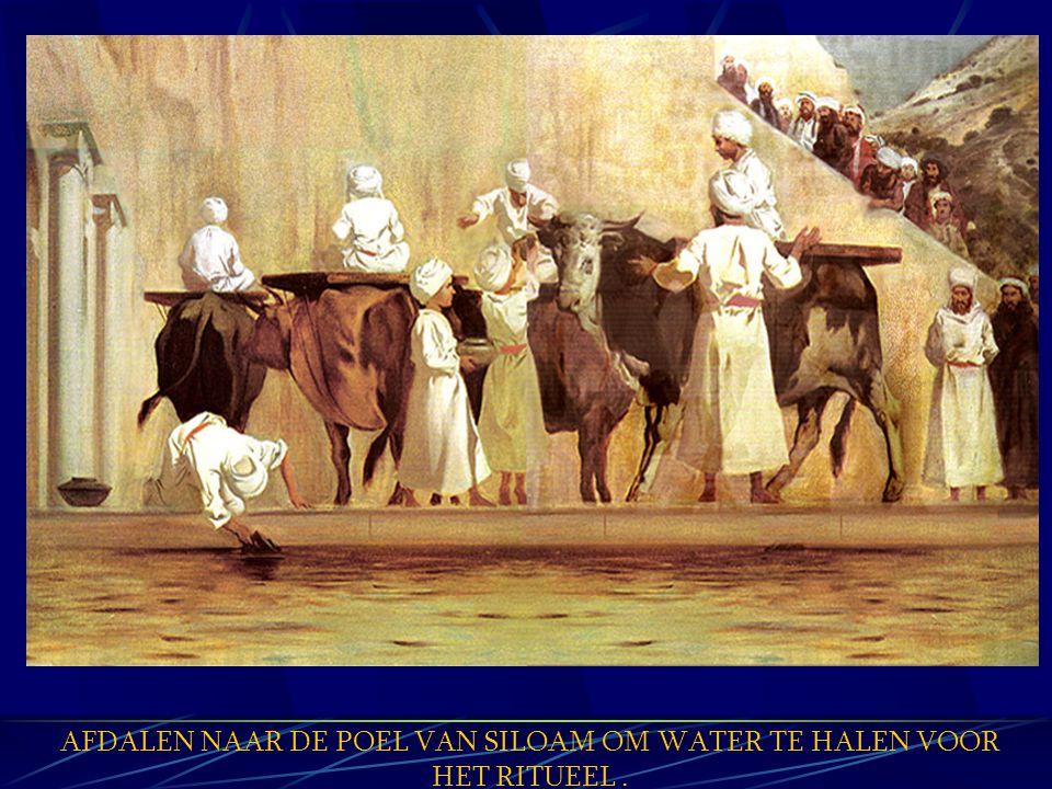 STAMMEN AAN DE OOSTKANT GAAN EERST (Numeri 10:5) JUDAH LEGERDE TEN OOSTEN VAN DE TABERNAKEL(Numeri 2:3) MOSES EN AARON LEGERDEN TEN OOSTEN VAN DE TABERNAKEL(Numeri 3:38) DE TIEN STAMMEN VAN IRAEL WERDEN OOSTWAARTS ALS GEVANGENEN GENOMEN (2 Koningen 17:6) TWEE STAMMEN WERDEN OOSTWAART S IN GEVANGSCHAP GENOMEN (2 Koningen 25:21) DE OLIJFBERG WAS EEN PLAATS WAAR MENSEN YHVH AANBADEN (2 Samuel 15:30-32)