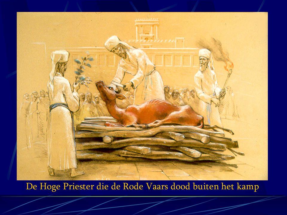 YAHSHUA WAS EEN OFFER EN VOLGENS DE THORA HEILIGT HET ALTAAR DE OFFERGAVE DE VRAAG.