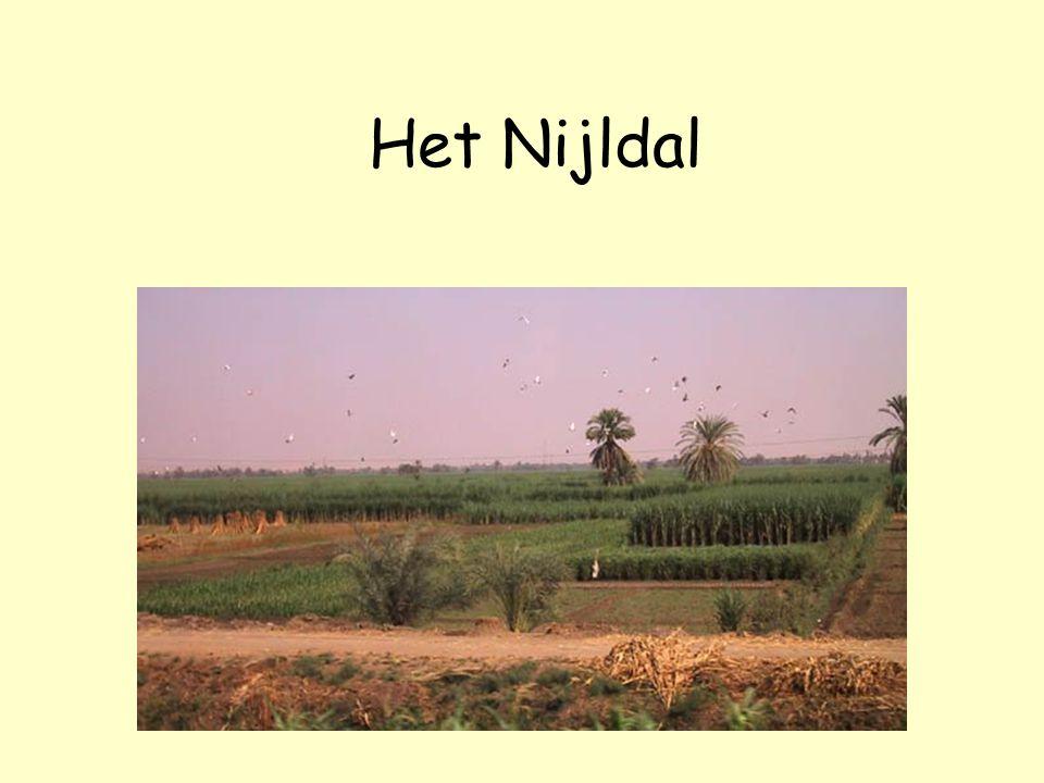 Het Nijldal