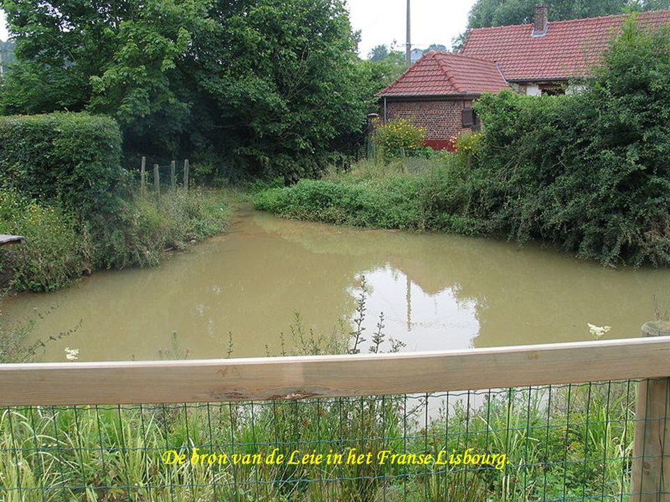 De bron van de Leie in het Franse Lisbourg.