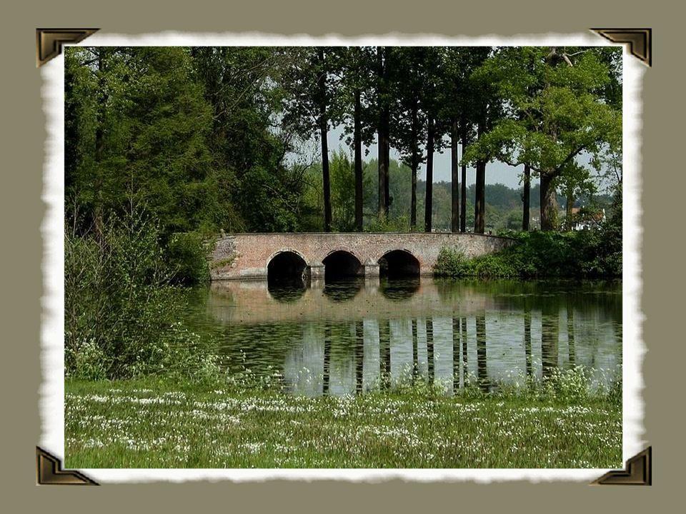 De rivier is 202 km lang, waarvan 109 km in België. Van Armentiers (Armentières) tot Wervik vormt de rivier over 24 km de Belgisch-Franse grens.