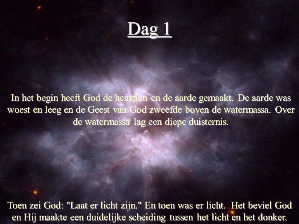 Dag 1 Toen zei God: