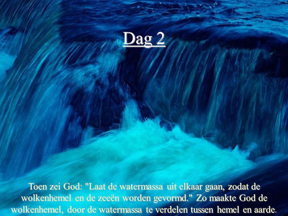 Dag 3 Daarna zei God: Laat het water onder de hemel samenstromen in zeeën en het droge land zichtbaar worden. En dat gebeurde.