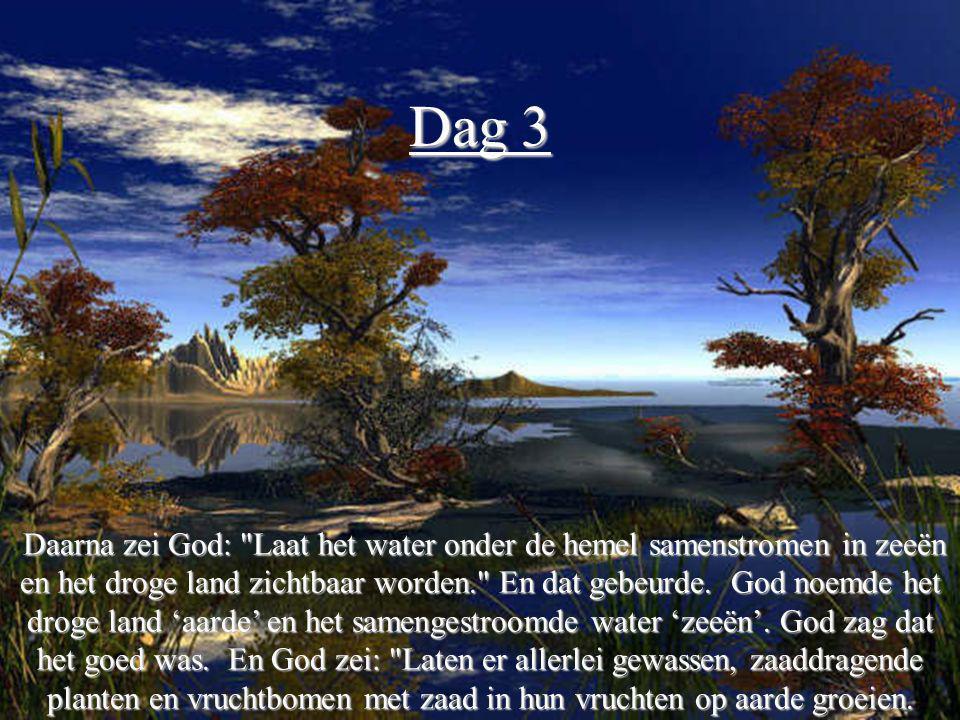 Dag 4 Toen zei God: Ik wil dat er heldere lichten aan de hemel verschijnen om de aarde te verlichten en het verschil tussen dag en nacht aan te geven.