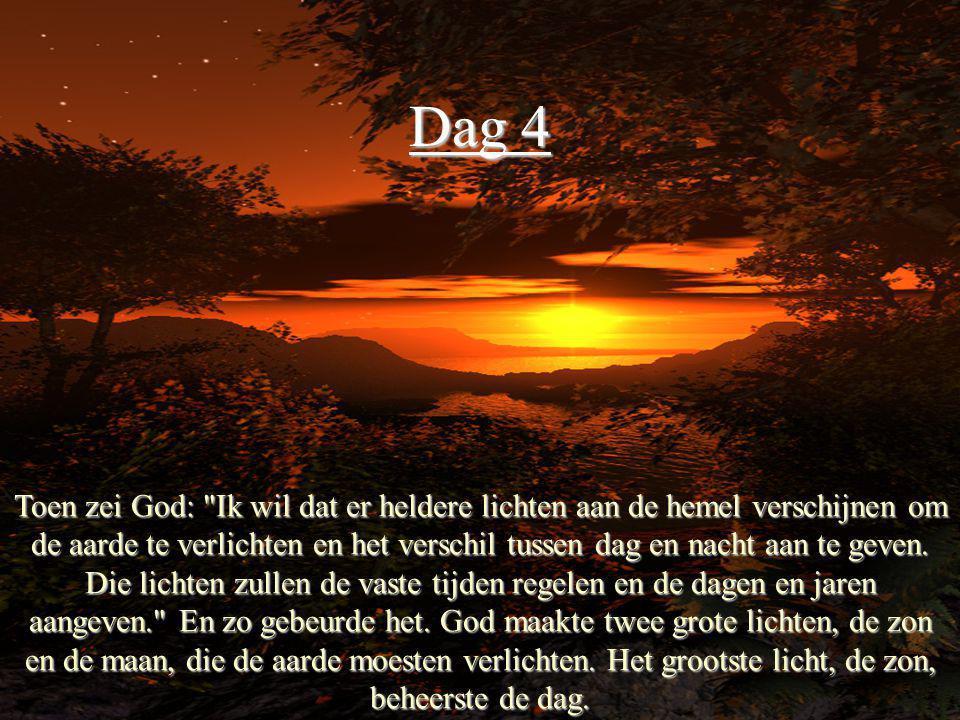 Dag 4 Toen zei God:
