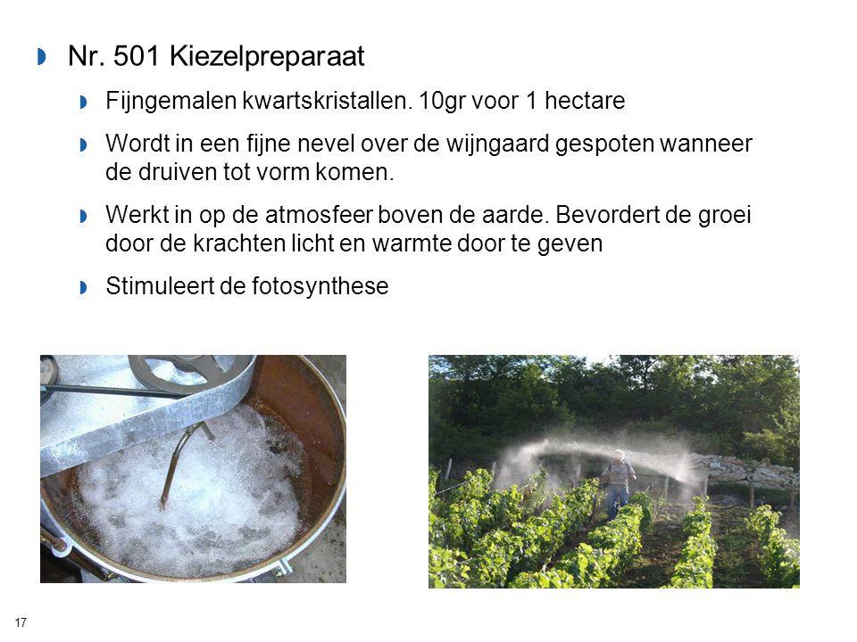  Nr. 501 Kiezelpreparaat  Fijngemalen kwartskristallen. 10gr voor 1 hectare  Wordt in een fijne nevel over de wijngaard gespoten wanneer de druiven