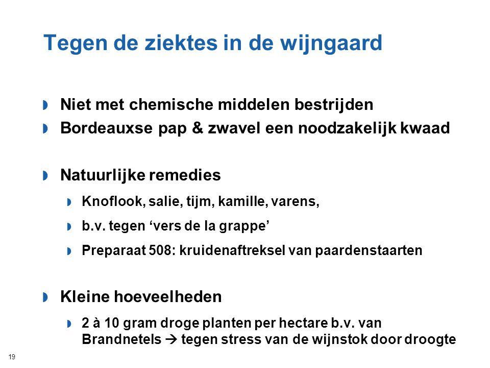 Tegen de ziektes in de wijngaard  Niet met chemische middelen bestrijden  Bordeauxse pap & zwavel een noodzakelijk kwaad  Natuurlijke remedies  Kn
