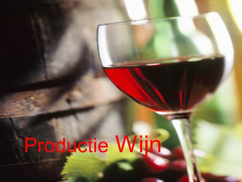 Productie Wijn