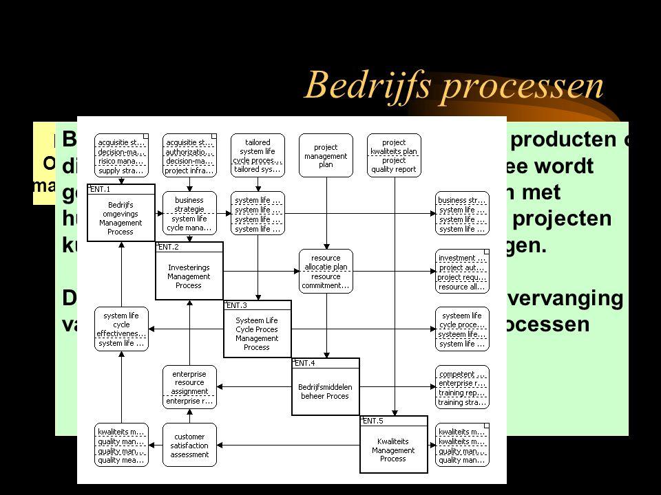 Bedrijfs Omgeving management Investerings management Systeem Life-Cycle management Bedrijfs Middelen beheer Kwaliteits management Bedrijfsprocessen ma