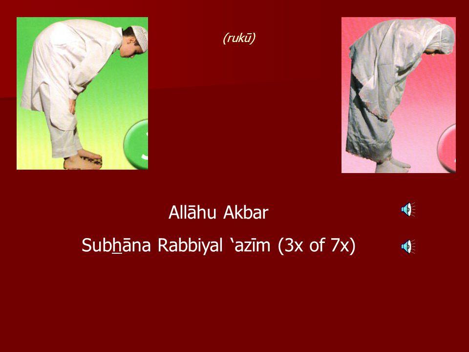 Allāhu Akbar Subhāna Rabbiyal 'azīm (3x of 7x) (rukū)