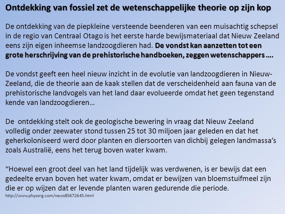Ontdekking van fossiel zet de wetenschappelijke theorie op zijn kop De vondst kan aanzetten tot een grote herschrijving van de prehistorische handboeken, zeggen wetenschappers ….