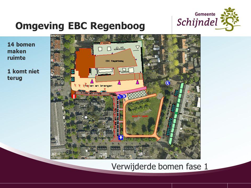 Verwijderde bomen fase 1 Omgeving EBC Regenboog 14 bomen maken ruimte 1 komt niet terug