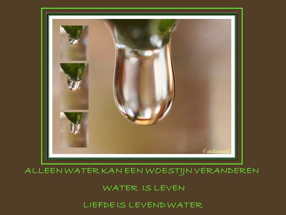 ALLEEN WATER KAN EEN WOESTIJN VERANDEREN WATER IS LEVEN LIEFDE IS LEVEND WATER