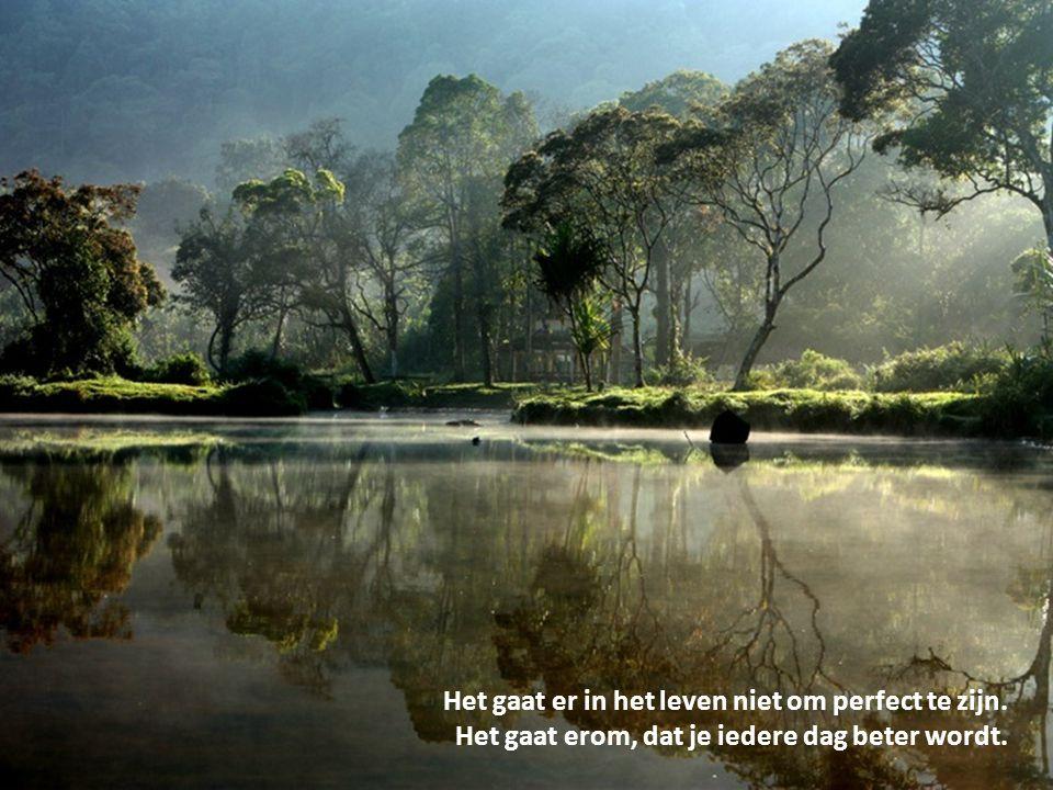 Het gaat er in het leven niet om perfect te zijn. Het gaat erom, dat je iedere dag beter wordt.