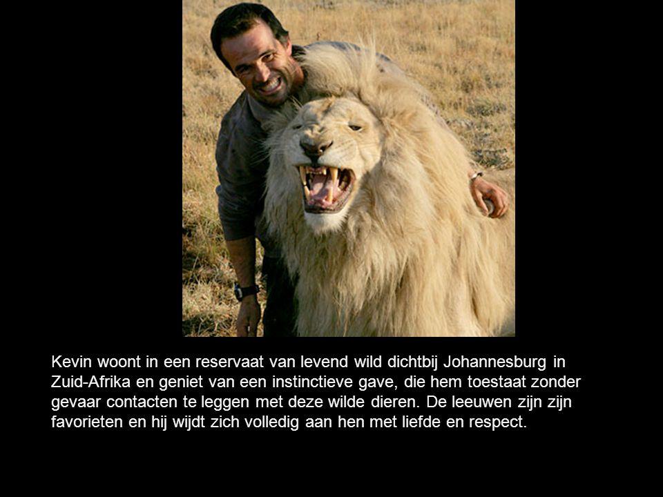 Kevin Richardson Hij is er in geslaagd een ongelooflijke band van vertrouwen te stichten met de grote katachtigen, zijnde chita s, luipaarden of de gevreesde leeuwen die de titel kregen van koningen van de de jungle.
