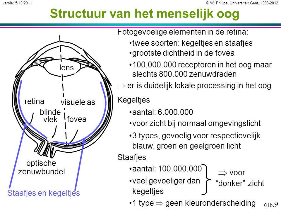 © W. Philips, Universiteit Gent, 1998-2012versie: 5/10/2011 01b. 9 Structuur van het menselijk oog Fotogevoelige elementen in de retina: twee soorten:
