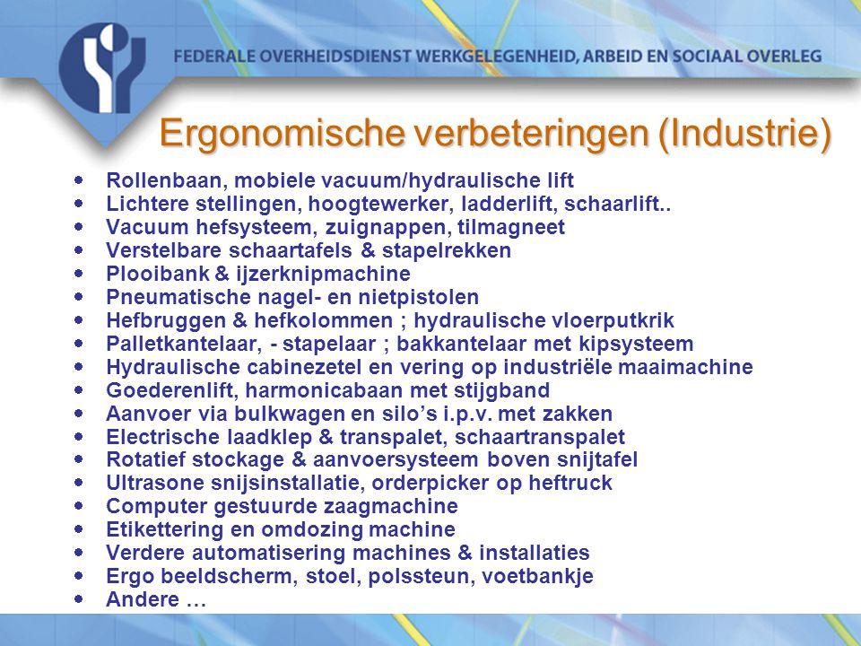 Ergonomische verbeteringen (Industrie)  Rollenbaan, mobiele vacuum/hydraulische lift  Lichtere stellingen, hoogtewerker, ladderlift, schaarlift..
