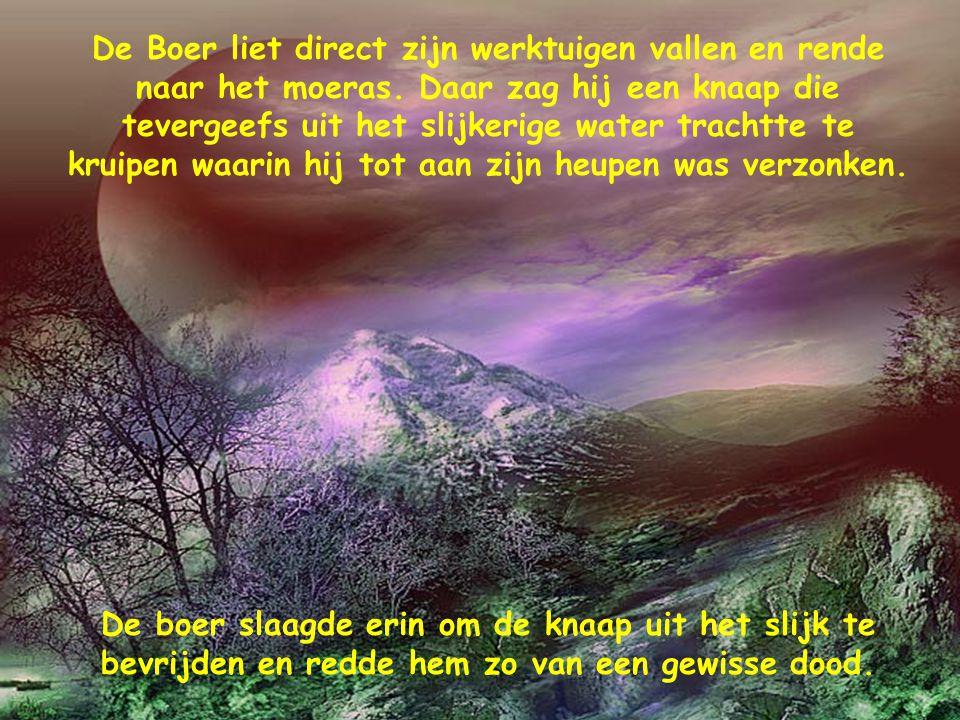 De Boer liet direct zijn werktuigen vallen en rende naar het moeras.